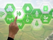 Going Green – The Importance of Digitalizing Environmental Data