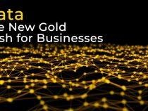 Data – The New Gold Rush for Businesses